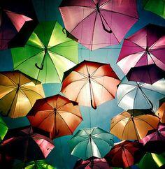 デイドリーム。。。きっと傘影は少し涼しくてお昼寝したくなるのでしょう。