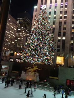 The Tree at Rockefeller Center, NYC