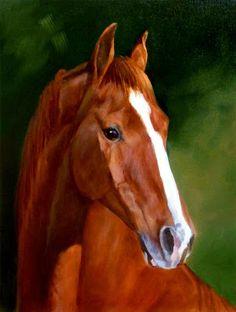 Head of a horse - (cabezas-de-caballos)