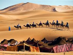See photos of Morocco (including the Sahara, Marrakech, Casablanca, and more) in this travel photo gallery from National Geographic. Paises Da Africa, North Africa, Morocco Travel, Africa Travel, Desert Dunes, Places To Travel, Places To See, Places Around The World, Around The Worlds