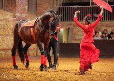 """Espectáculo de Córdoba Ecuestre """"Pasión y duende del Caballo Andaluz"""" en las Caballerizas Reales."""