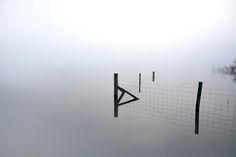Reflections at Frensham Little Pond #Farnham #Surrey – see https://flic.kr/p/pNgirG