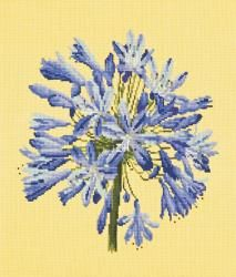 Elizabeth Bradley | Needlepoint Kits Blooms - The Beaumaris Collection - Browse By Kit Collection - Shop (UK/International)