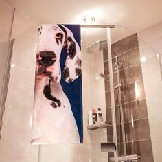 Bath or shower time on a whole new level! Wrap your dog's face around you! Bath Or Shower, Shower Time, Small Pug, Dog Beach, Cockapoo, Bichon Frise, Basset Hound, Westies, Cocker Spaniel