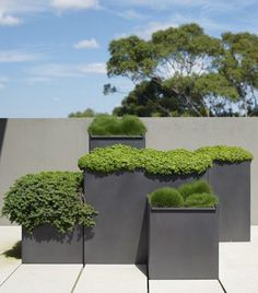 Green planting Containers
