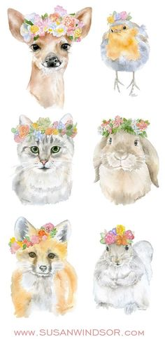 Watercolor animal fine art prints by Susan Windsor. Spring floral giclée reproductions.