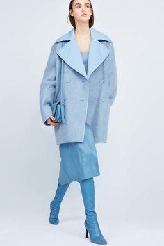 Nina Ricci Pre-Fall 2017 Fashion Show Collection