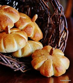 Want to make some adorable pumpkin dinner rolls for your Thanksgiving meal? Here's how to turn simple frozen dinner rolls into festive pumpkin look alikes. Thanksgiving Food List, Thanksgiving Appetizers, Pumpkin Recipes, Fall Recipes, Holiday Recipes, Frozen Dinner Rolls, Fete Halloween, Creative Food, Appetizer Recipes