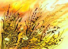 флористика | Записи в рубрике флористика | Дневник мауро : LiveInternet - Российский Сервис Онлайн-Дневников