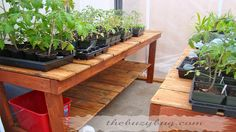 DIY greenhouse benches, great idea