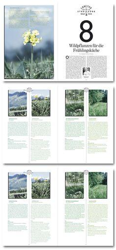 "Michael Gollong – Hotellerie et Gastronomie Magazin No. 1-2012 ""Durch Wald und Flur""."