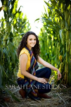 Maze photos. Could take photos like this in the Fall in the Corn Mazes.