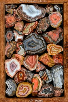 Wayne Shortridge 57 years of collecting Fairburn agates Minerals And Gemstones, Rocks And Minerals, Fairburn Agate, Lake Superior Agates, Rock Hunting, Rock Collection, Mineral Stone, Rocks And Gems, Agate Stone