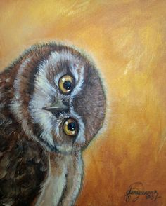 Nfac Original Owl Painting by Anna Vanover | eBay