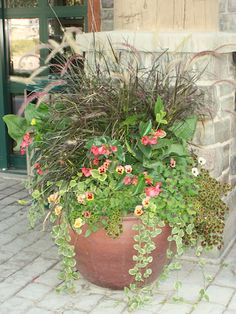 Fall Plants in Large Container Pots {The Creativity Exchange}