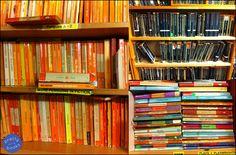 Skoob, bookstore in London London Calling, Tours