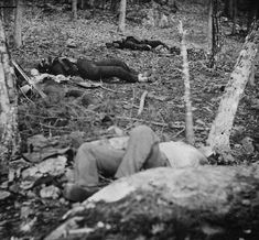 (1863, July) Four dead soldiers repose in the woods near Little Round Top - Gettysburg, PA