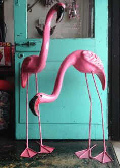 LARGE MEXICAN FLAMINGOS