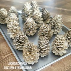 Bleaching and dipping and cybersales Oh MY! parts part water. then soak 24 hours using a heavy bowl or plate to weigh them down as they wil Rustic Christmas, Christmas Art, Christmas Projects, White Christmas, Christmas Holidays, Pine Cone Crafts, Holiday Crafts, Pine Cone Decorations, Christmas Decorations