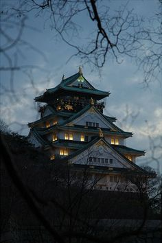 Osaka castle lit up at night, with cherry blossoms in the foreground, Osaka, Japan by TinyCarmen
