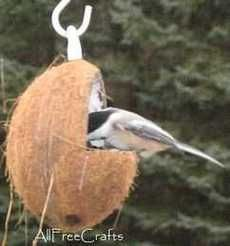 How to Make Coconut Bird Feeder - two easy designs; great homemade gift for bird lovers that could be made by older kids who can handle a hack saw.