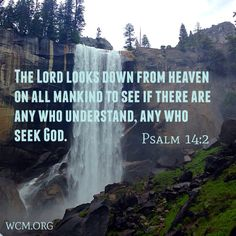 Do you seek God?  Millions do and need him in their lives, but have no access to religious guidance or a community.    You can make a difference.  Become an Ordained Minister and start your own Church or Ministry.  You can do Missionary Work or unite couples in Holy Matrimony.     Learn More About Ordination: http://www.wcm.org/ord.html    Photo taken in Yosemite National Park where WCM founder DE McElroy performed many weddings.    #Jesus #God #waterfall #help #missionarywork #missionary…