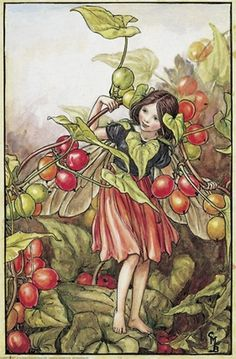 Cicely Mary Barker - Flower Fairies of the Autumn