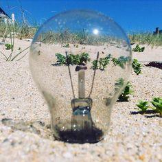 """Waste and sea""  #planetoftheapes #ecology #idea #tw"