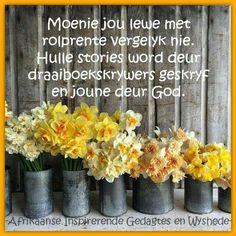 Meet, Afrikaans, Afrikaans Language