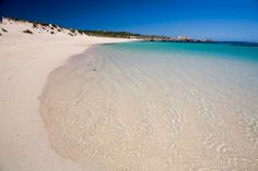 Ricey's Beach on Rottnest Island's west end is a hideaway for the local quokka population. Gallery: Rottnest Island's best beaches