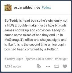 hahaha so sad that Teddy didn't end up in the Cursed Child...wasn't even mentioned.  Hmm...JK did you kill him off and decide to just not tell us?