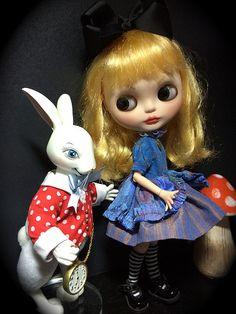 Alice - Who's that rabbit  