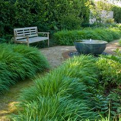 Accessible Family Garden Design in West Sussex with bubbling water feature, Hakonechloa grasses and bench Glass Garden, Water Garden, Modern Water Feature, Garden Retaining Wall, Family Garden, Garden Signs, Green Landscape, Ornamental Grasses, Garden Beds