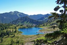 Seven Lakes Basin. Near Sol Duc hot springs. (The plan: Backpack up to the lakes, stay a night or two, hike back down and soak in the hotsprings at the bottom and eat curly fries.)