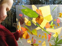 "An autumn collage on contact paper, using leaves, petals, grass & some tissue paper ("",)"