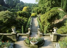 National Trust Gardens: Biddulph Grange Garden, Staffordshire in England. This is the Italian Garden from the terrace at the top of the steps.  The garden is a Victorian horticultural masterpiece created by its owner, plantsman James Bateman.   The plant collection is from all over the world taking you on one visit to an Italian terrace, a Himalayan glen, an Egyptian pyramid and a Chinese-inspired garden.