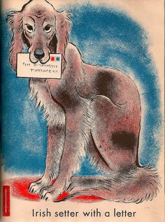 Vintage Children's Book, Ape in a Cape | Flickr - Photo Sharing!