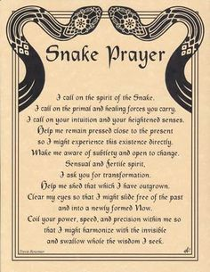 "Spirit Totem Animals:  Snake Prayer. We are ending our year of the Snake now. No wonder there was so much action in ""shedding"" our skins of the past this last year..powerful energy.."