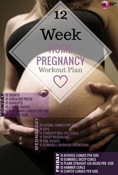 12 Week Home Pregnancy Workout Plan. http://michellemariefit.com/monthly-home-pregnancy-workout/