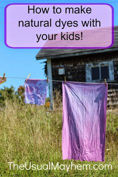 How to make natural dyes, from The Usual Mayhem.what to avoid (! Art Activities For Toddlers, Fun Crafts For Kids, Art For Kids, Fun Activities, Letter Activities, Kids Fun, Kid Crafts, Shibori, How To Dye Fabric