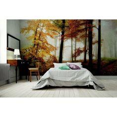 Veľkoformátová tapeta Autumn Forest Autumn Forest, Profile