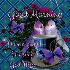 Good Morning Have A Great Tuesday God Bless good morning tuesday tuesday quotes good morning quotes happy tuesday tuesday quote tuesday blessings happy tuesday quotes good morning tuesday Good Morning Tuesday Images, Happy Tuesday Morning, Happy Tuesday Quotes, Good Morning Texts, Good Morning Greetings, Good Morning Good Night, Good Morning Wishes, Blessed Wednesday, Morning Messages