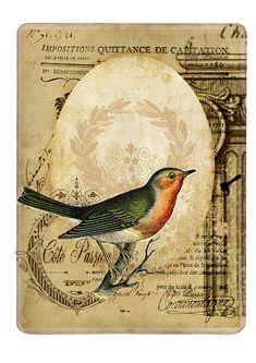 Redbird Vintage By Côté Passion. DIY craft printable.  Vintage style ephemera.  Beautiful bird image.