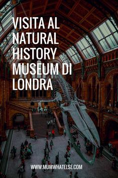 Cosa vedere al Natural History Museum di Londra con bambini - A mum in London. London with kids and family travel tips London Calling, Natural History Museum London, London With Kids, Hobby, London Travel, Where To Go, Family Travel, Travel Guide, Britain