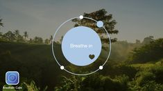 Breathe In - Hold - Breathe out. Get your daily calm with this meditation breathe bubble with relaxing jungle background. Breathing App, Breathing Meditation, Pregnancy Affirmations, Exercise For Pregnant Women, Calm App, Mindfulness App, Daily Calm, Health App, Breath In Breath Out