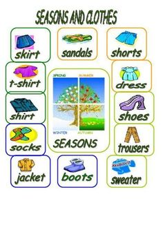 Seasons and Clothes |TET Success Key