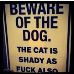 watch out for those sneaky cats ;)