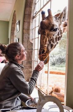 Giraffe Manor is located in Langata, Nairobi, Kenya. It is about 45 minutes from the Nairobi airport, and just outside the Kenya Travel, Africa Travel, Places To Travel, Places To Go, Safari, Uganda, Out Of Africa, Nairobi, Adventure Is Out There
