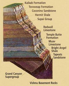 Know        Kaibab Limestone  The          Toroweap Formation  Canyon's      Coconino Sandstone  History     Hermit Shale  Study      Supai Formation  Rocks     Redwall Limestone  Made     Muav Limestone  By         Bright Angel Shale  Time         Tapeats Sandstone           & the Vishnu Schist