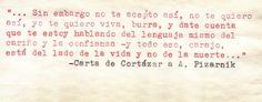 Julio Cortázar cumple cien años: diez curiosidades - Estandarte